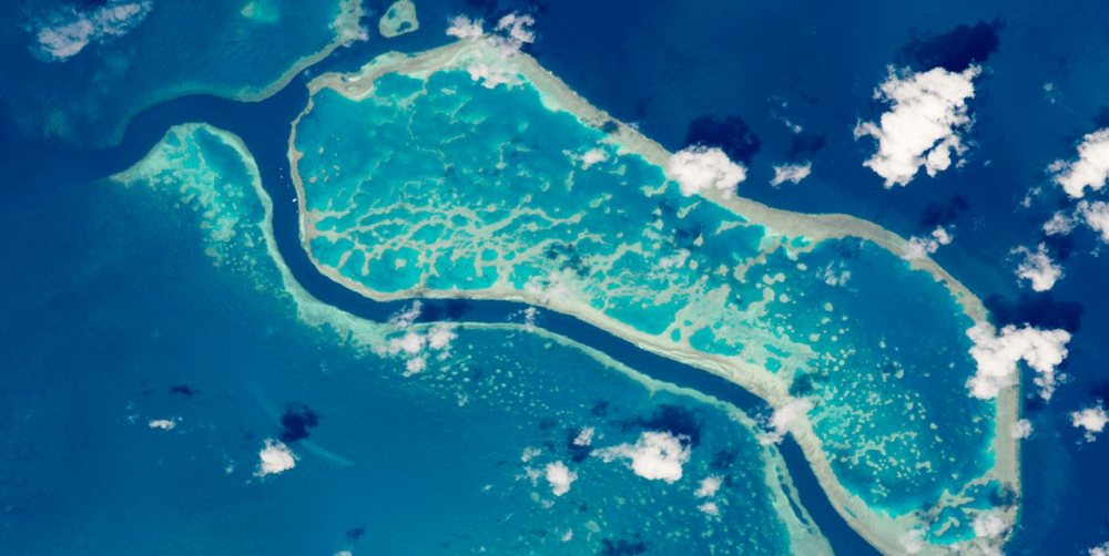 barrera de coral 1