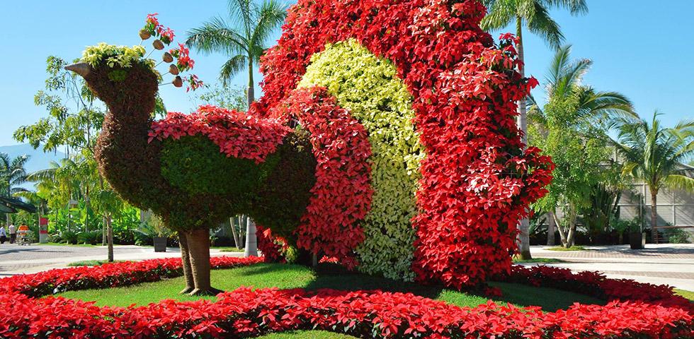 jardines mexico4.jpg